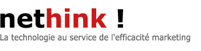 nethink : web marketing et strat�gie internet
